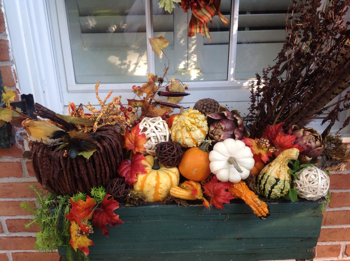 fall window box french gardener dishes. Black Bedroom Furniture Sets. Home Design Ideas