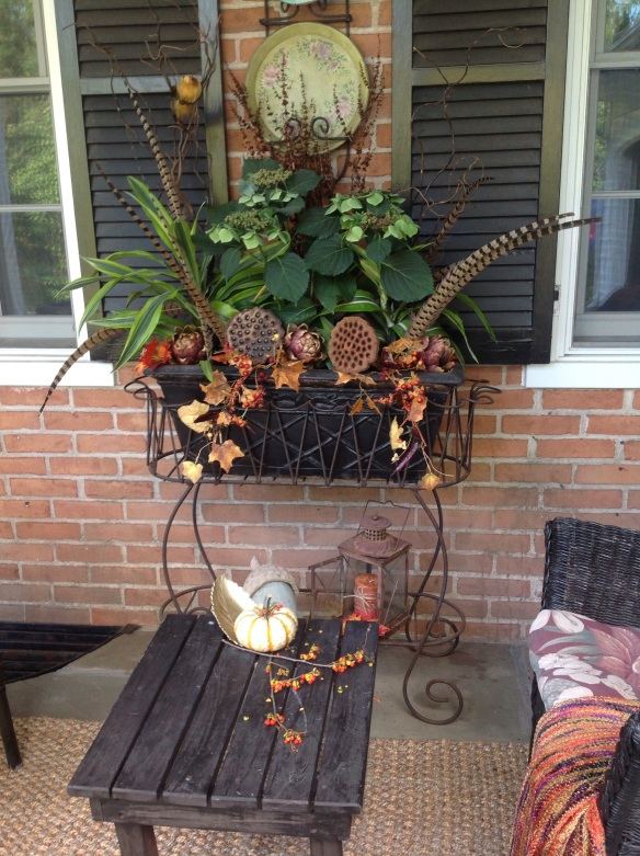 The summer hydrangeas in the porch planter were still going strong and I wasn't ready to part with them. My solution was to tuck in fall elements such as pheasant feathers, gourds, artichokes, hot pepper trailing garland, curly willow and lotus pods around the hydrangeas. This is now a spectacular fall planter homonizing with the rest of the porch décor.