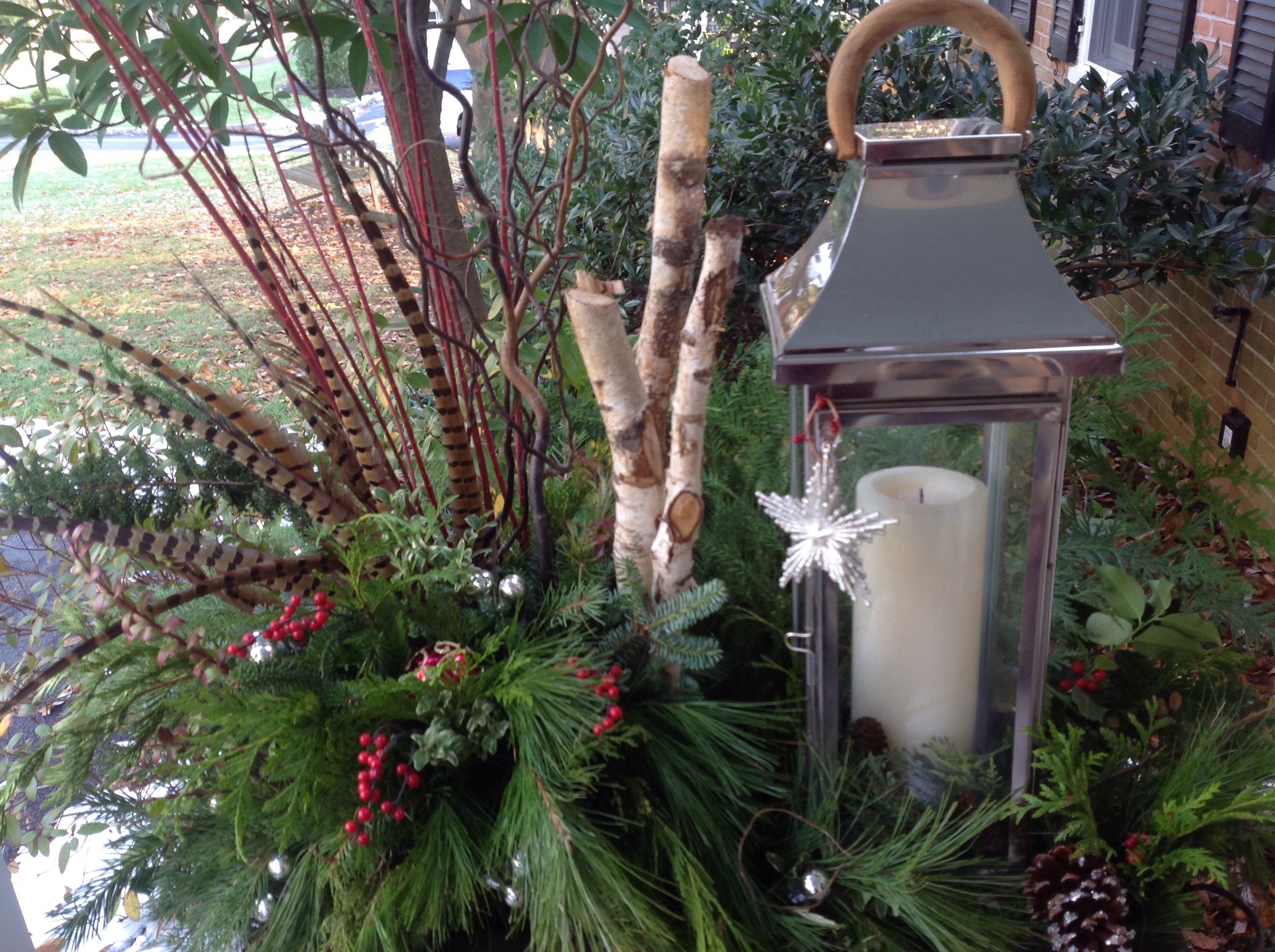 Winter Container Festive By Nature French Gardener Dishes