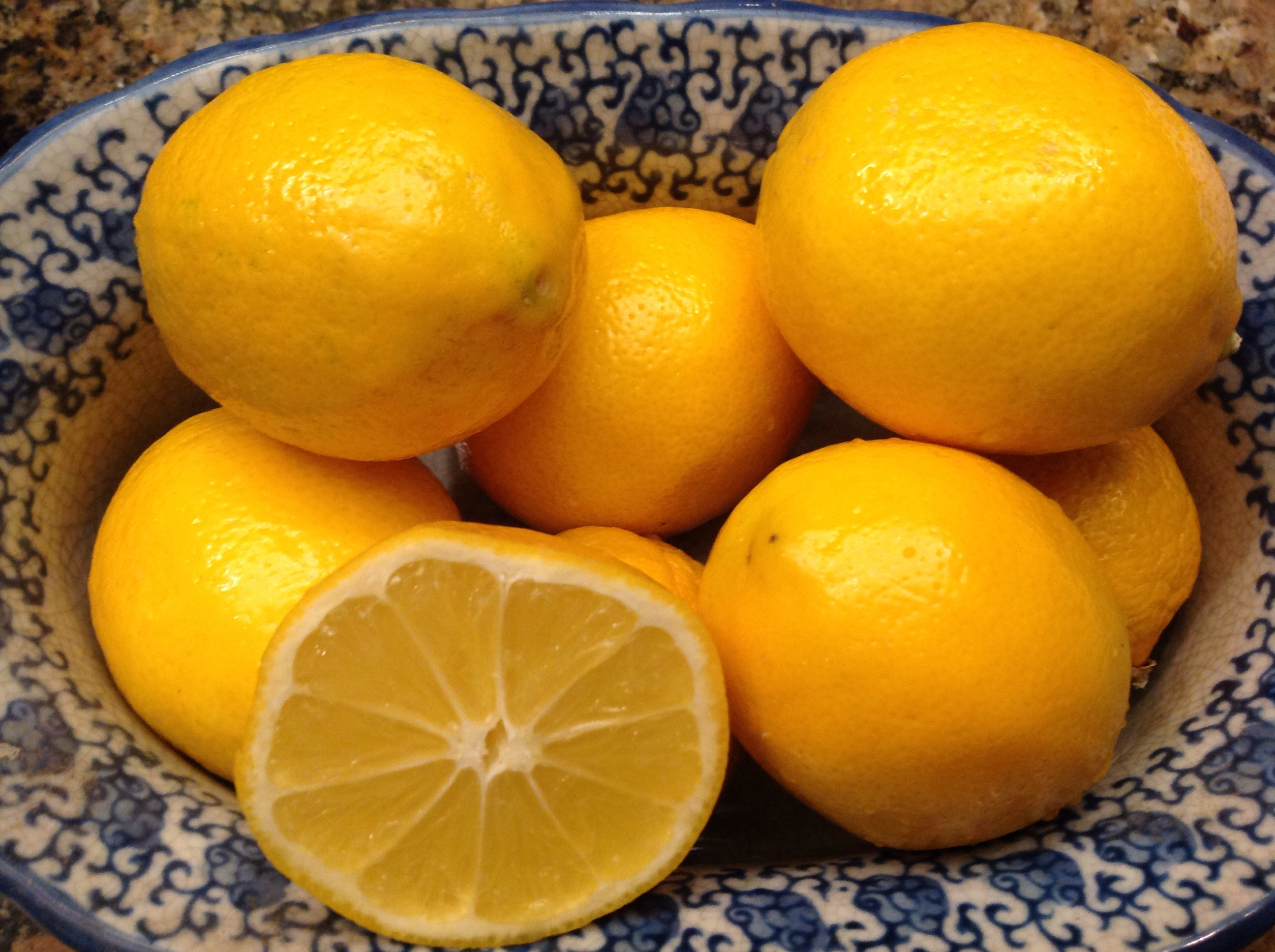 Whole Meyer Lemon Cake French Gardener Dishes