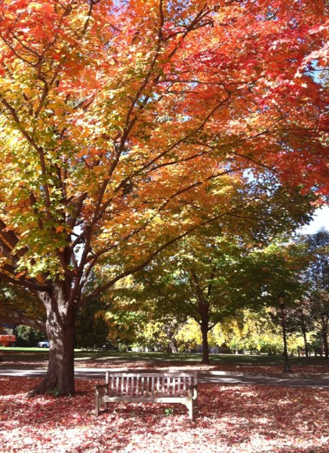 Haverford College, PA