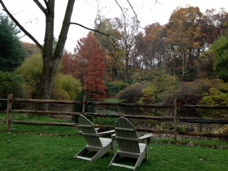 Jenkins Arboretum, Berwyn, PAZ. Photo courtesy of my friend Dona