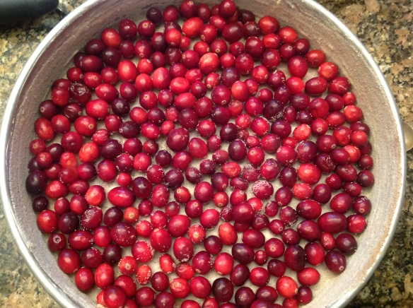 The prepared pan with the cranberries.