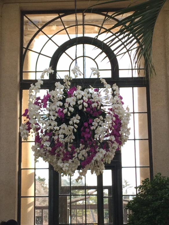 Giant topiaries were created with orchids throughout the conservatory.