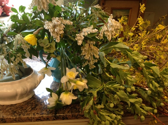 Clippings from the garden and the soup tureen for a container