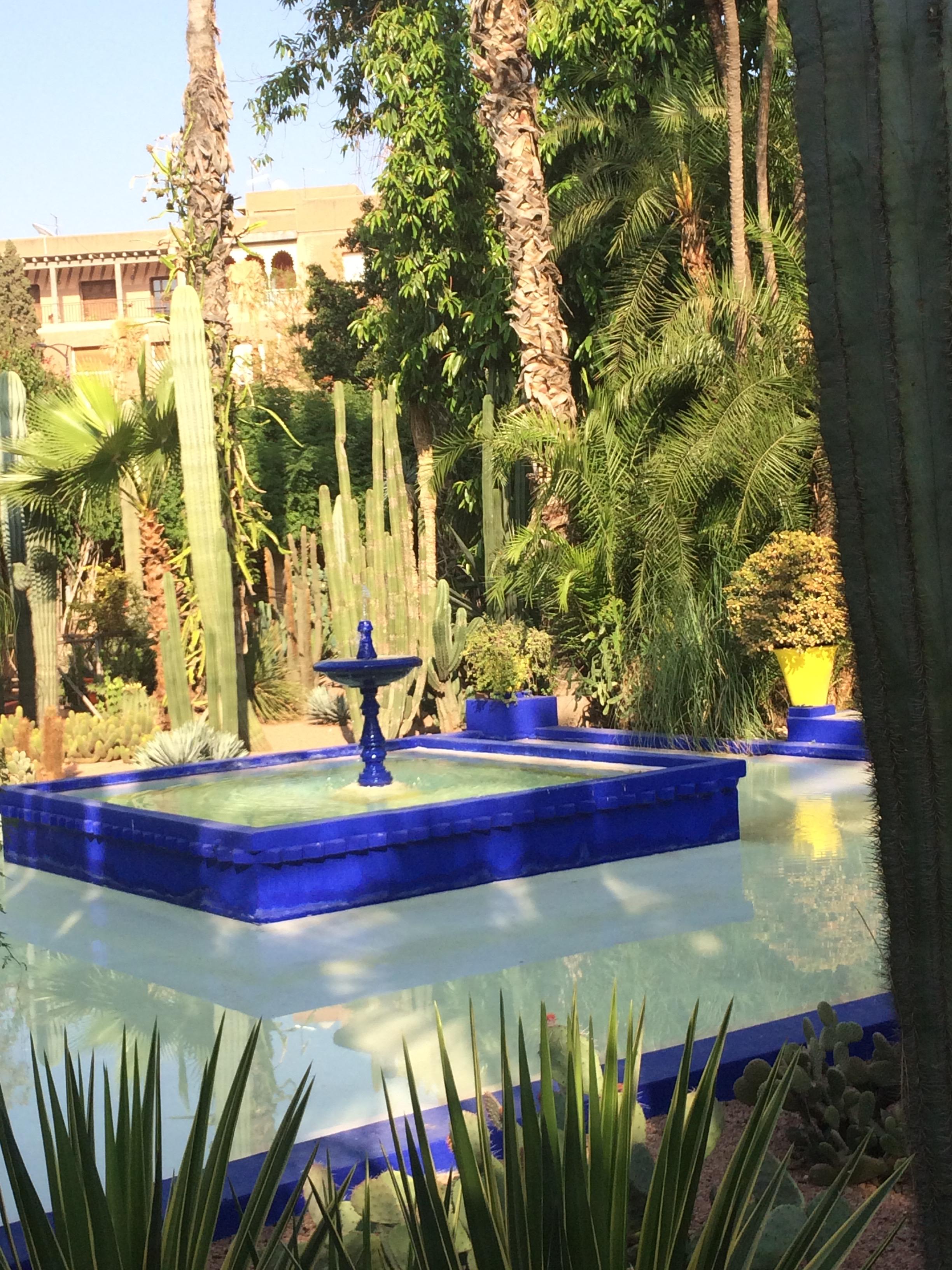 Seductive jardin majorelle of marrakech french gardener dishes - Jardin majorelle marrakech photos ...