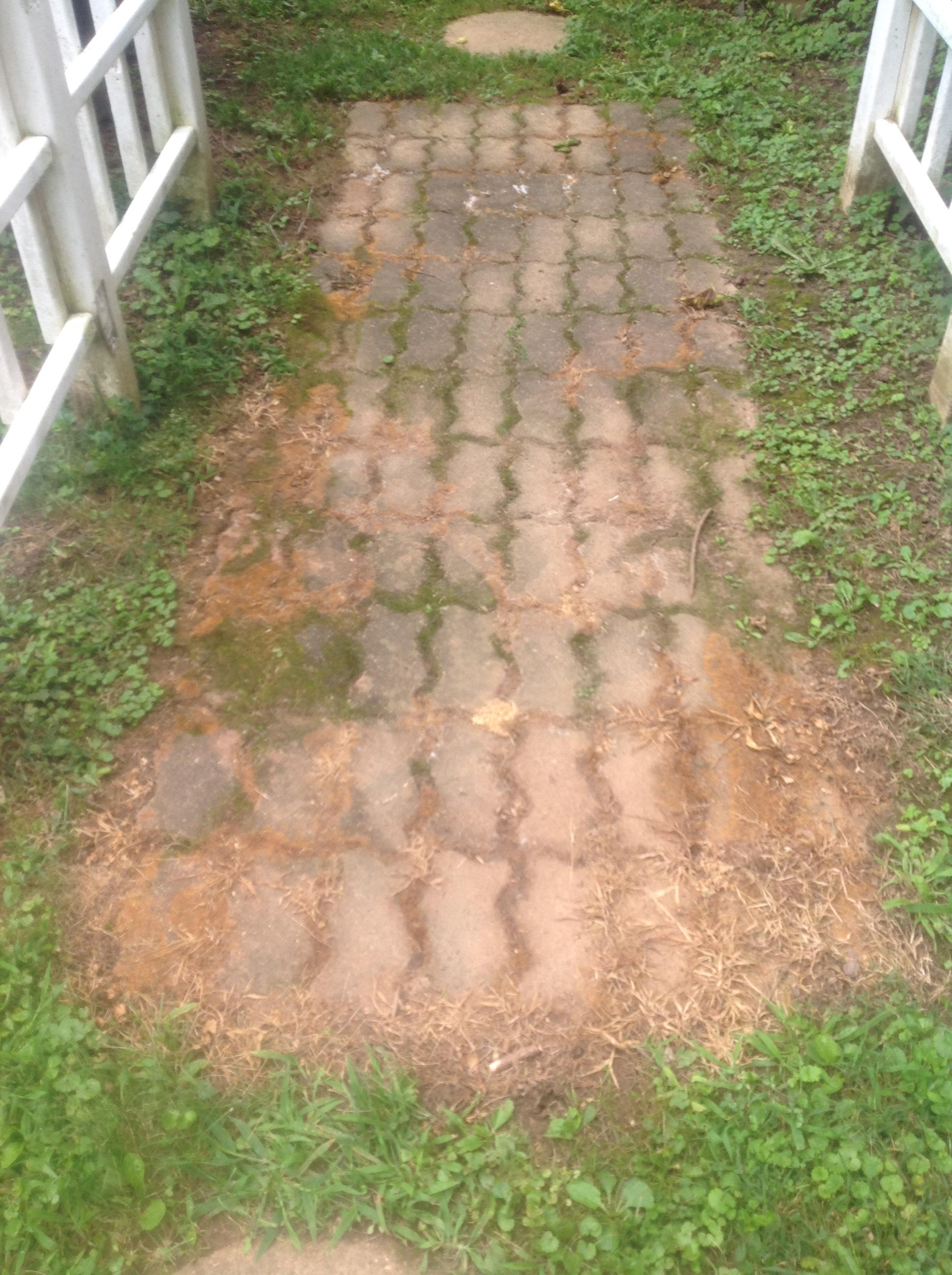 killer b gardens garden gon com ortho walmart for vegetable grass ip